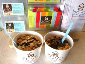 Before we forget! Product Placement: Zoyo Frozen Yogurt, L-R: Lara's Zoatmeal Cookie with dark chocolate chips and waffle cone pieces, and Jennifer's salted caramel with a whole bunch of yummy chocolate schtuff and toasted coconut. Ridiculously good. Image by Snotty Literati.